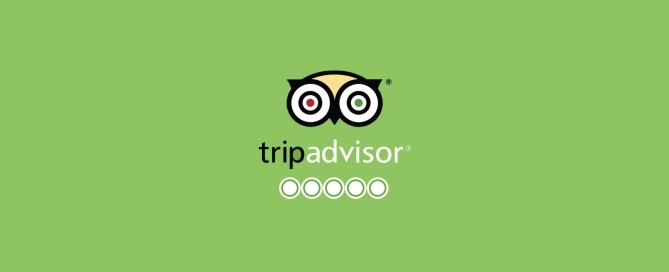 trip-advisor scegli cosa vuoi essere