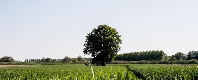 destinazione turistica rurale